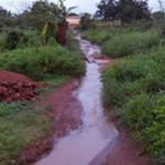Nkoteng_Chemin_03